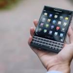 blackberries-1377071_1280